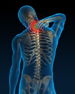 The Spine Whisperer_Chiropractic treatment