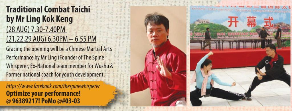 The Spine Whisperer Chiropractic Clinic_Art Busk 2015 Combative Tai Chi